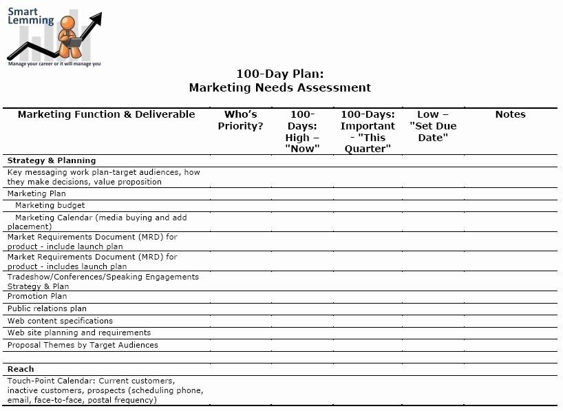 100 Day Plan Template Elegant Needs assessment Template