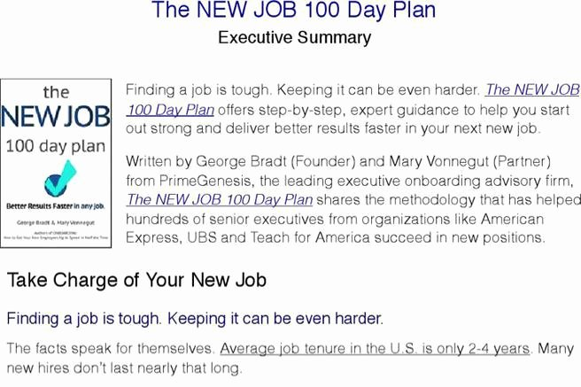100 Day Plan Template New 4 Sample 100 Day Plan Templates Free Download