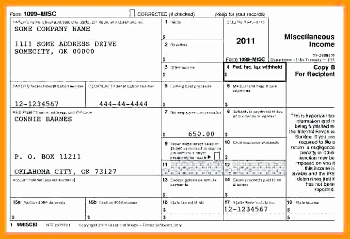 1099 Pay Stub Template Excel Lovely 15 1099 Pay Stub Template Excel