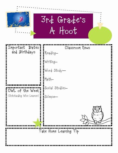 3rd Grade Newsletter Template New Classroom Ideas Ms D S Teaching Site