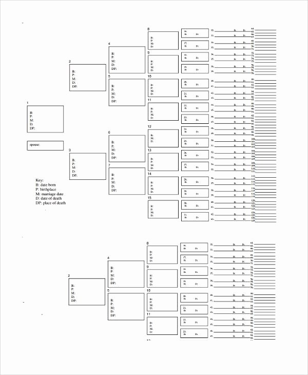 5 Generation Family Tree Template Excel Awesome 34 Family Tree Templates Free Download