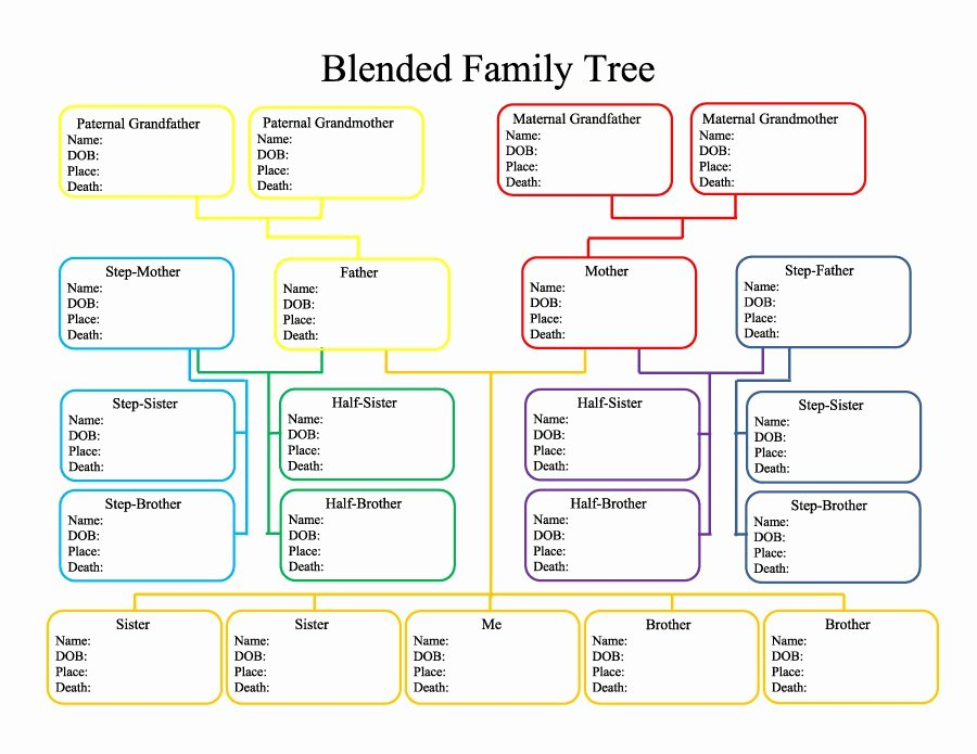 5 Generation Family Tree Template Excel Fresh 50 Free Family Tree Templates Word Excel Pdf