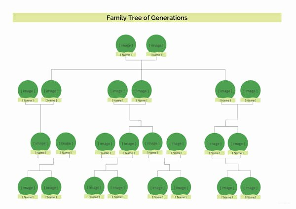 5 Generation Family Tree Template Excel Lovely Simple Family Tree Template 27 Free Word Excel Pdf