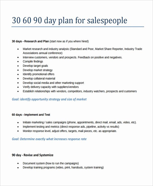 90 Day Goals Template Unique 22 30 60 90 Day Action Plan Templates Free Pdf Word
