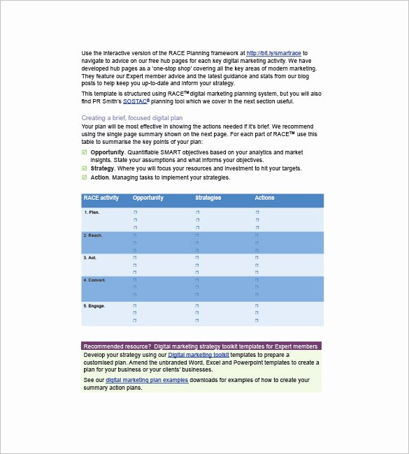 Advertising Campaign Template Unique Marketing Campaign Plan Template 11 Free Sample