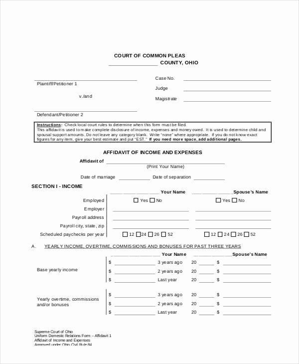 Affidavit Of Income Awesome 9 In E and Expense form Sample Free Sample Example