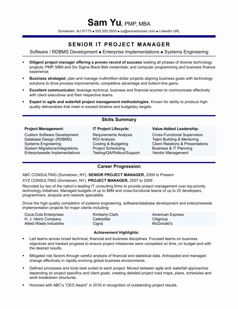 Agile Project Manager Resume Awesome Agile Product Owner Resume Examples