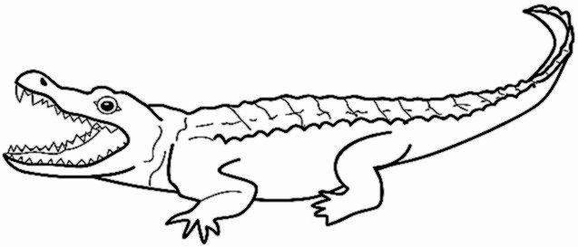 Alligator Template Printable Awesome Alligator Sheet Preschool Cut Coloring Pages