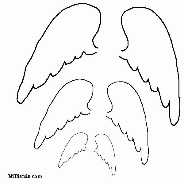 Angel Wing Templates Printable Beautiful 1000 Ideas About Angel Wings Drawing On Pinterest
