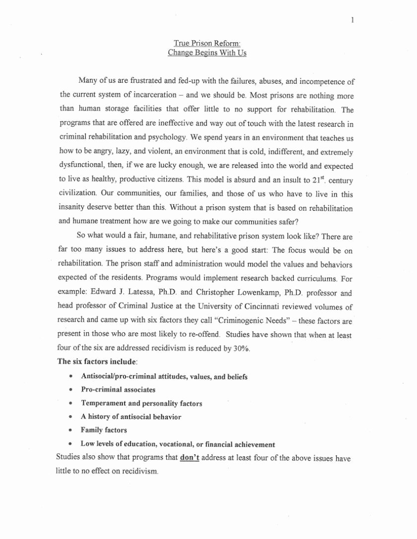 Animal Cruelty Essay Outline Fresh Domestic Violence Argumentative Essay Domestic Violence
