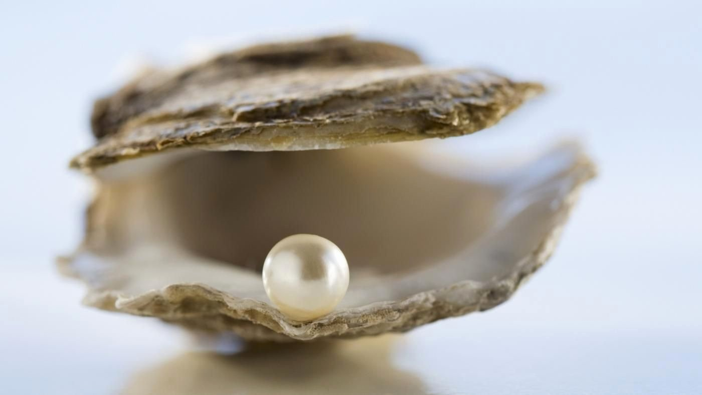 Animal Imagery In the Pearl Fresh What is the Symbolism Of A Pearl
