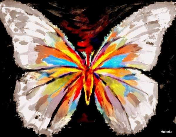 Animal Imagery In the Pearl Luxury Best 25 butterfly Symbolism Ideas On Pinterest