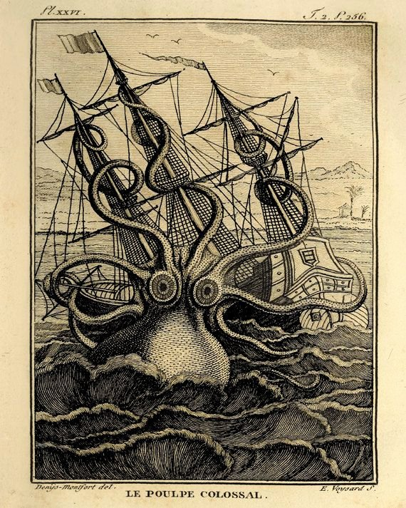 Animal Imagery In the Pearl Unique Octopus Art Art Print Old Prints Nautical Art Print