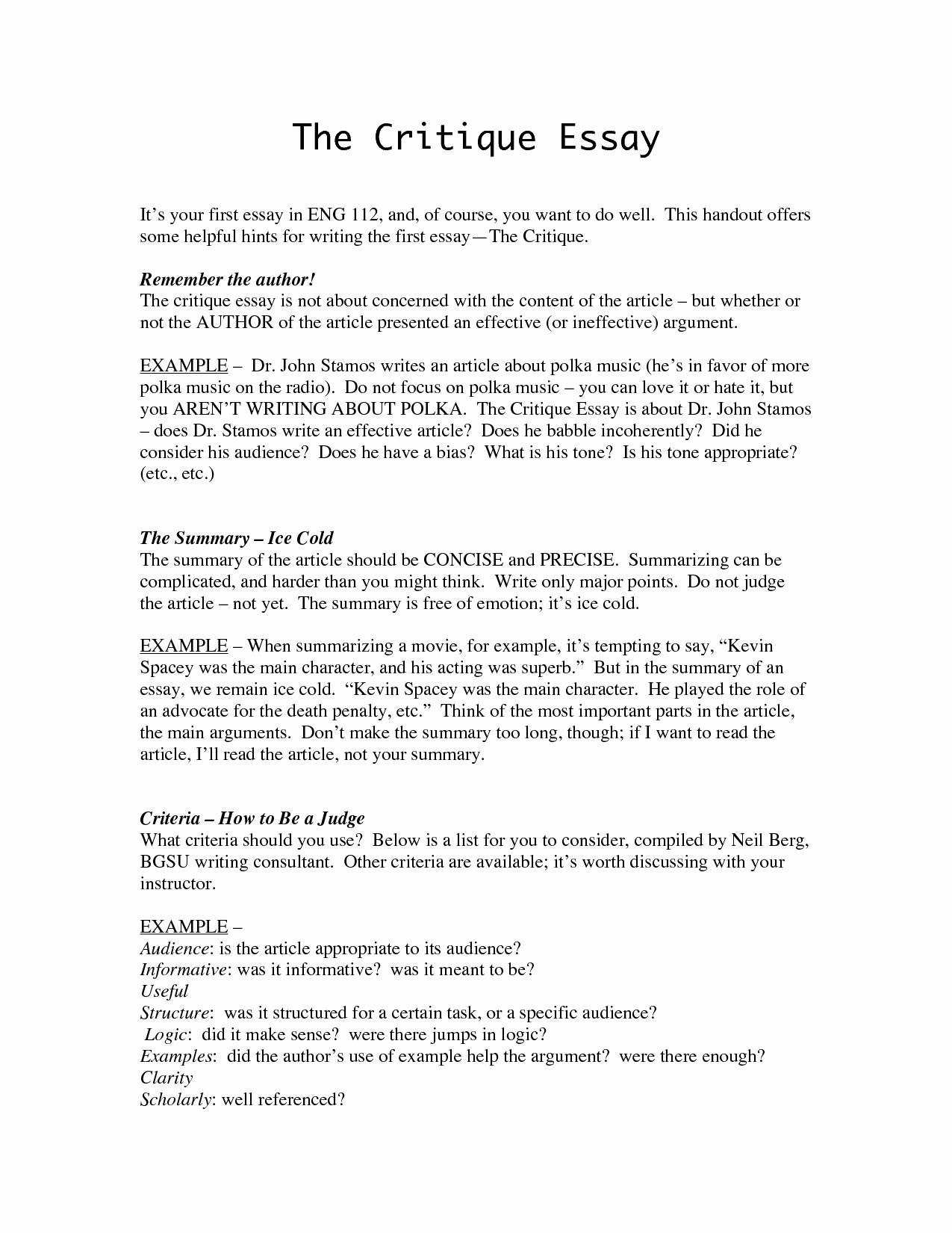 Art Institute Essay Example New 54 Critique Essay Critical Evaluation Essay Examples
