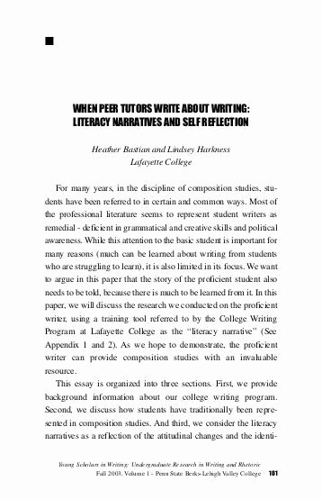 Art Institute Essay Prompt New Narrative Literacy Essays