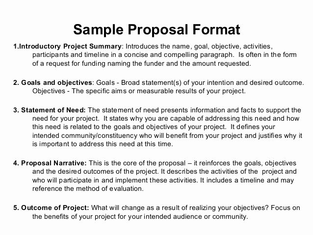 Artist Proposal Example Inspirational Best 25 Project Proposal Example Ideas On Pinterest