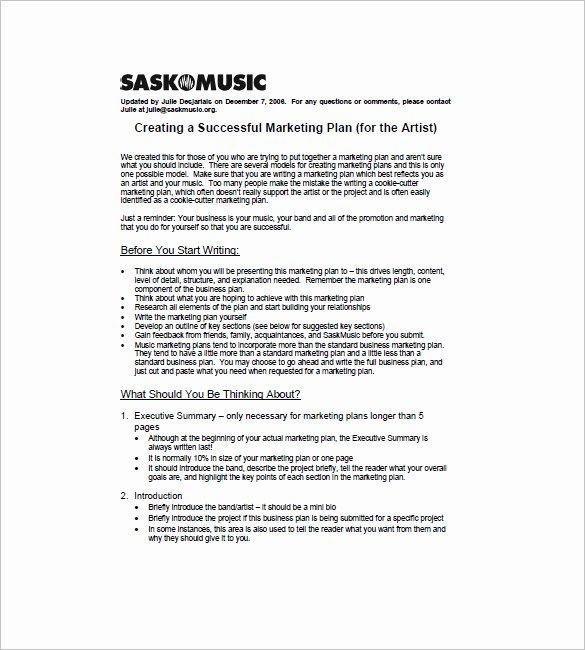 Artist Proposal Samples Fresh 15 Music Marketing Plan Templates Docs Pdf