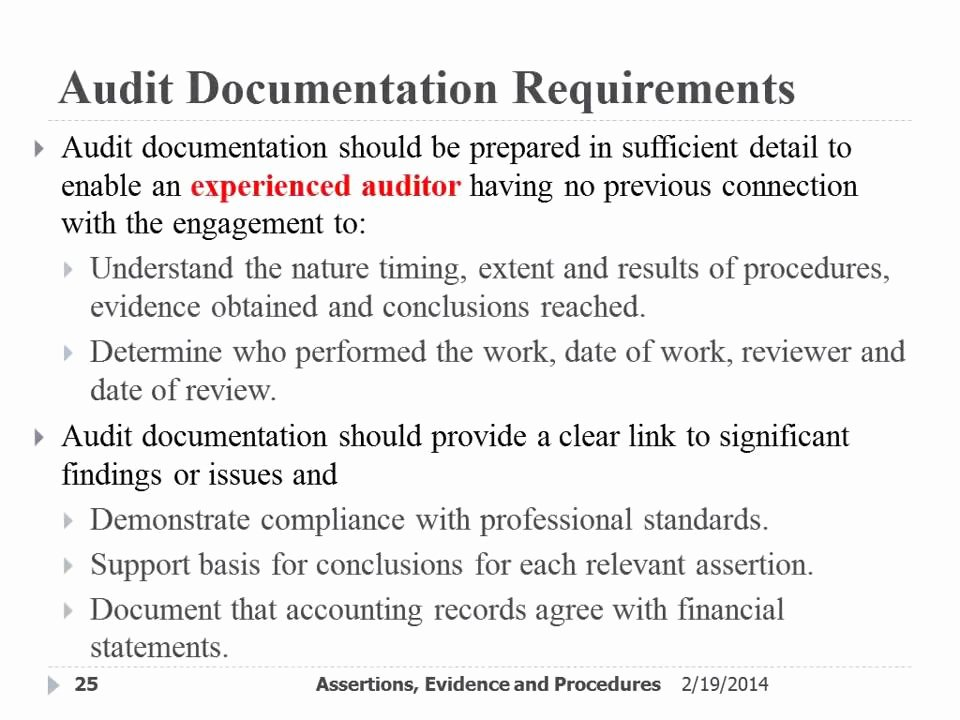 Audit Documentation Example Luxury Audit Documentation and Purpose