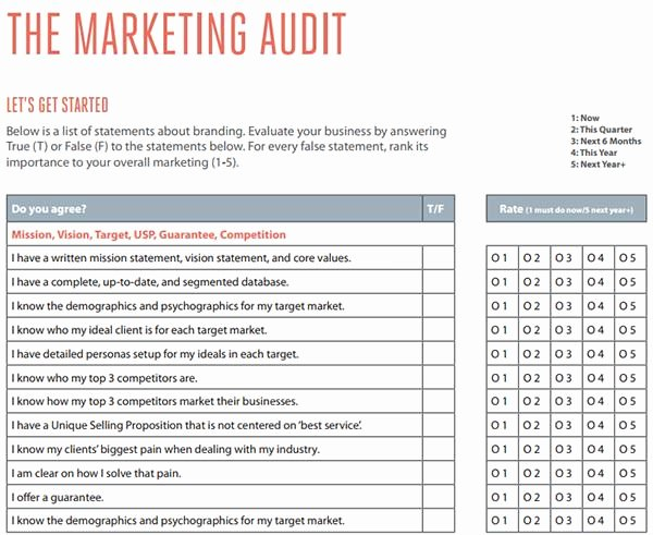 Audit Template Excel Inspirational 26 Free Marketing Audit Templates & Samples Word Pdf