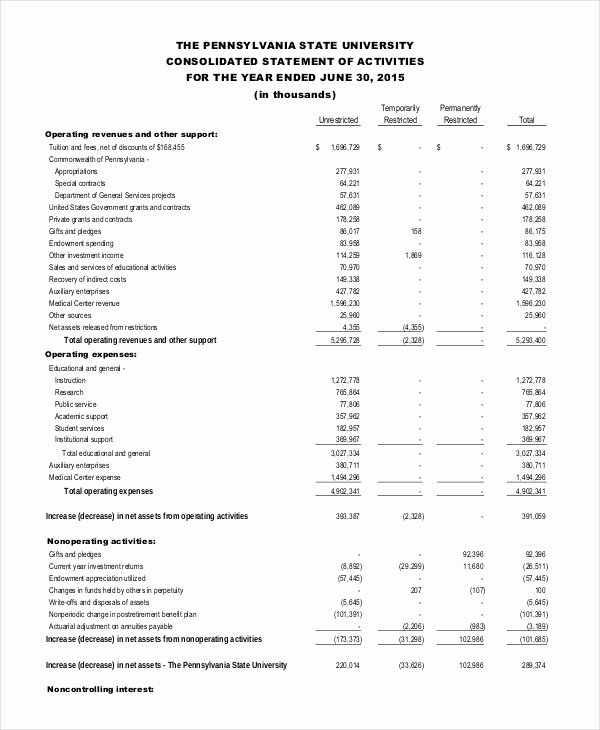 Audited Financial Statements Sample Fresh Financial Statement 20 Free Sample Example format