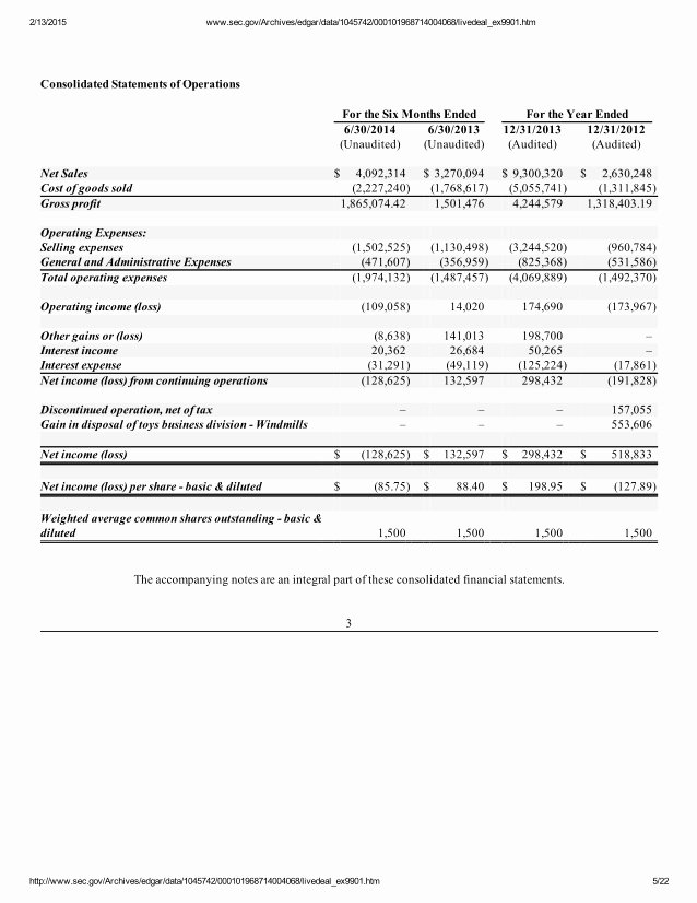 Audited Financial Statements Sample Inspirational Audited Financial Statements Of Modern Everyday Inc