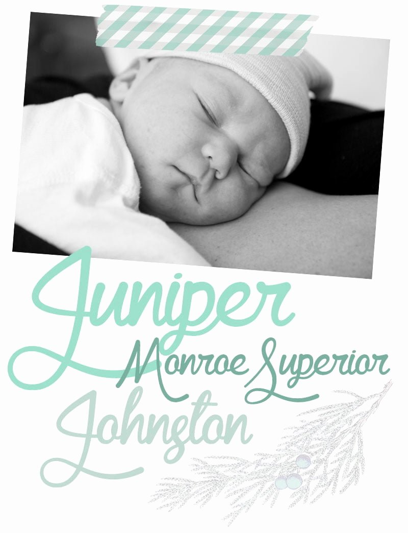 Baby Announcement Email Beautiful Wel E to the World Baby J wholefully
