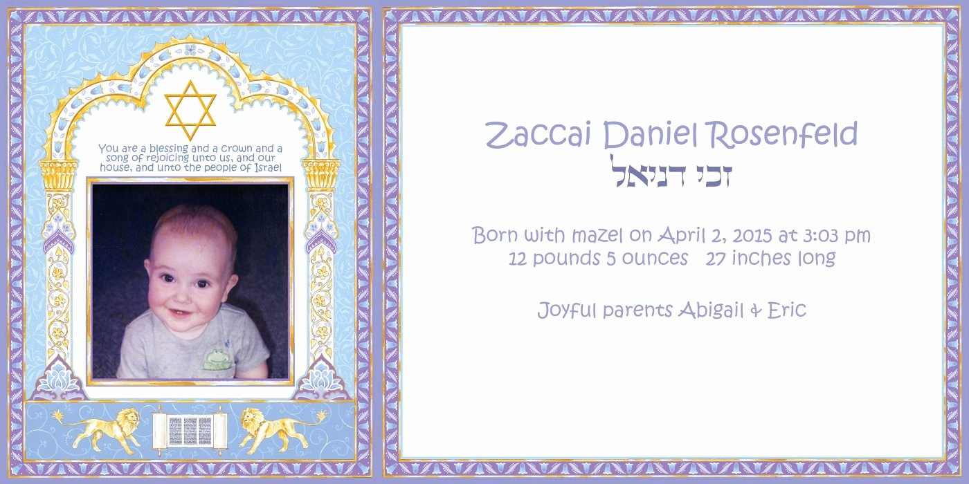 Baby Announcement Email New Baby Boy Lions Announcement with by Mickie Caspi
