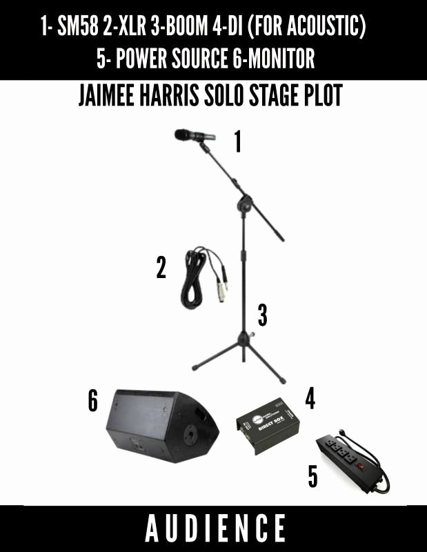 Band Input List Template Beautiful Jaimee Harris Stage Plot solo