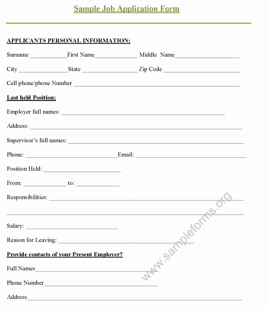 Basic Job Application Inspirational 9 Job Application Review form Examples Pdf