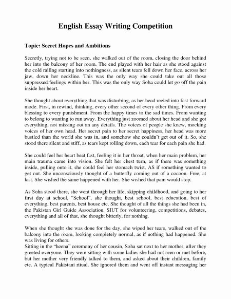 Best Essays Ever Written Fresh Trillian 2 My Ambitions Essay Research Paper How to