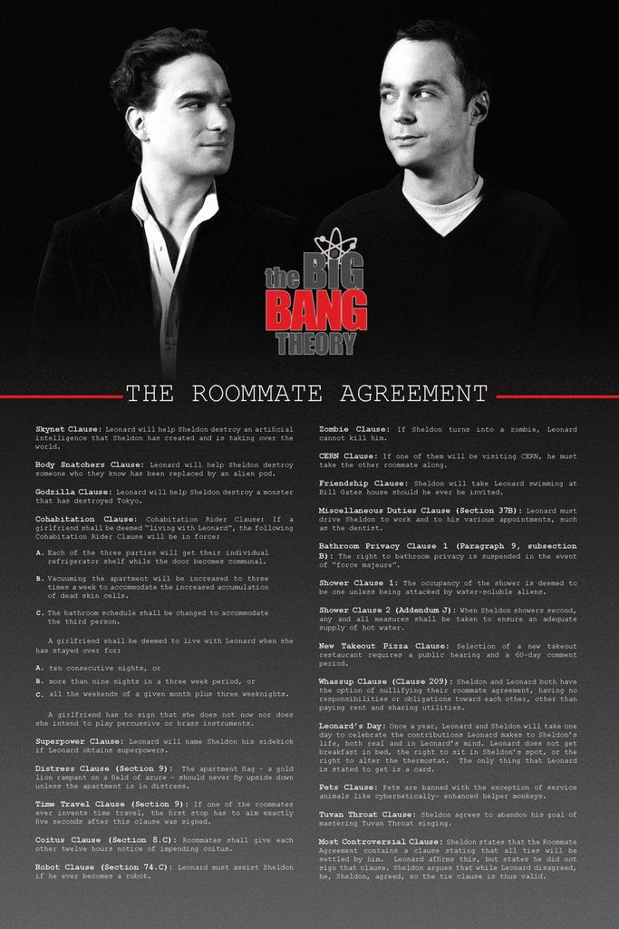 Big Bang theory Roommate Agreement Pdf Best Of 615 Best Images About the Big Bang theory On Pinterest