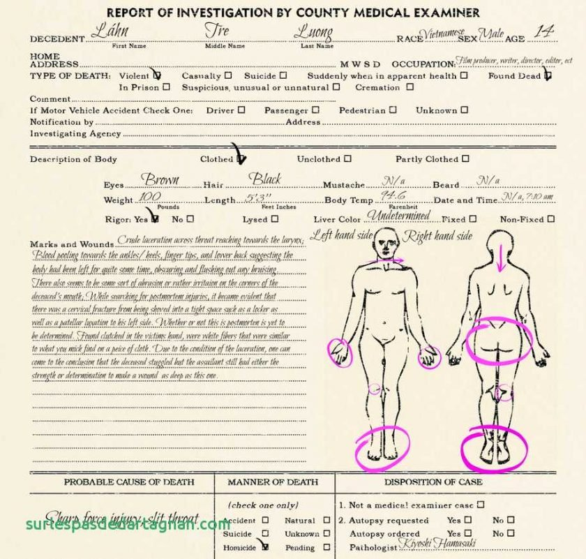 Blank Autopsy Report Template Inspirational Autopsy Report Template Blankat Example Uk Guidelines