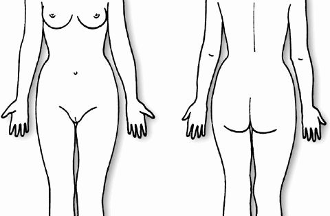 Blank Female Body Template Inspirational Body Diagram form Female