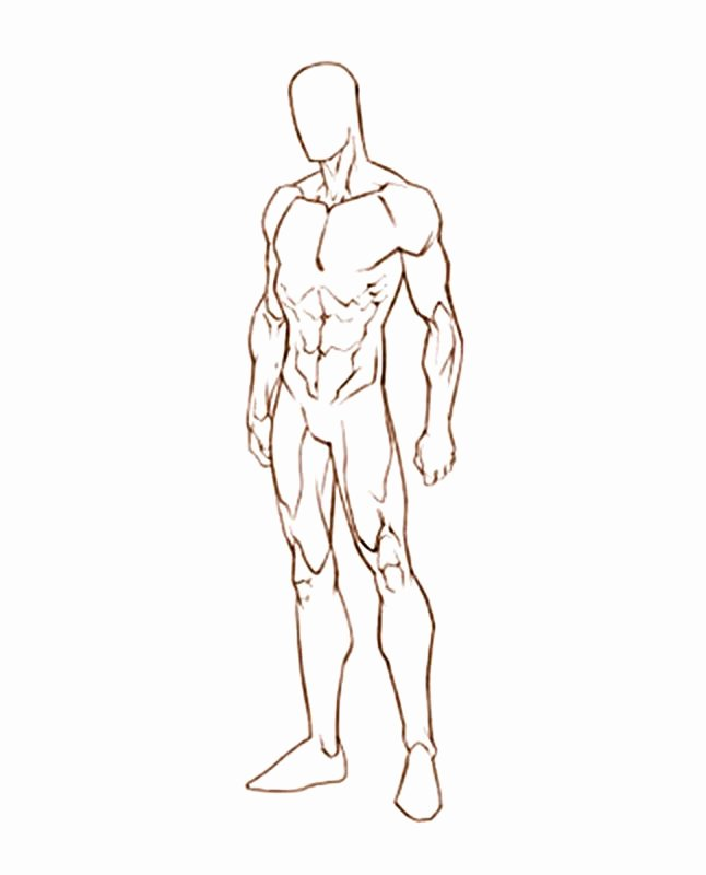 Blank Male Body Template Elegant Male Sketch Template Google Search