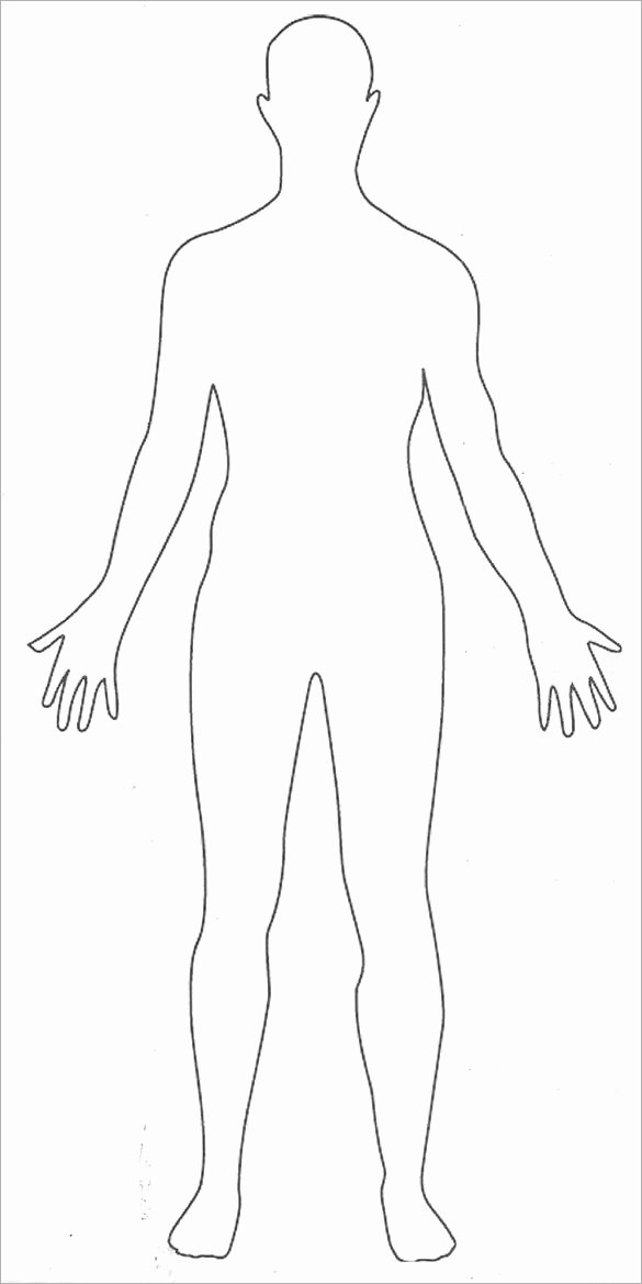 Blank Male Body Template Lovely 16 Human Body Outline Templates Doc Pdf