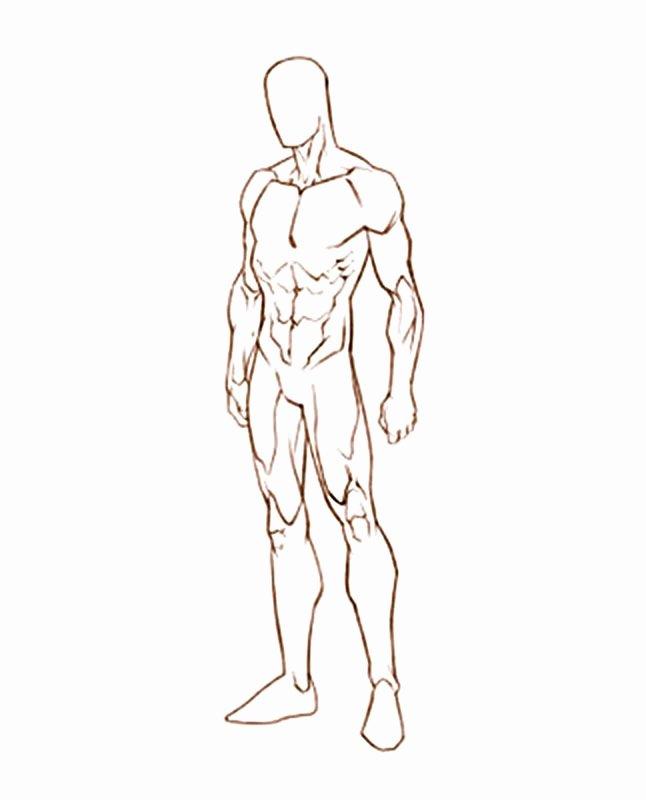 Blank Model Sketch Template Best Of Male Sketch Template Google Search