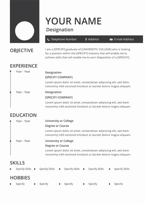 Blank Resume Template Pdf Lovely 46 Blank Resume Templates Doc Pdf