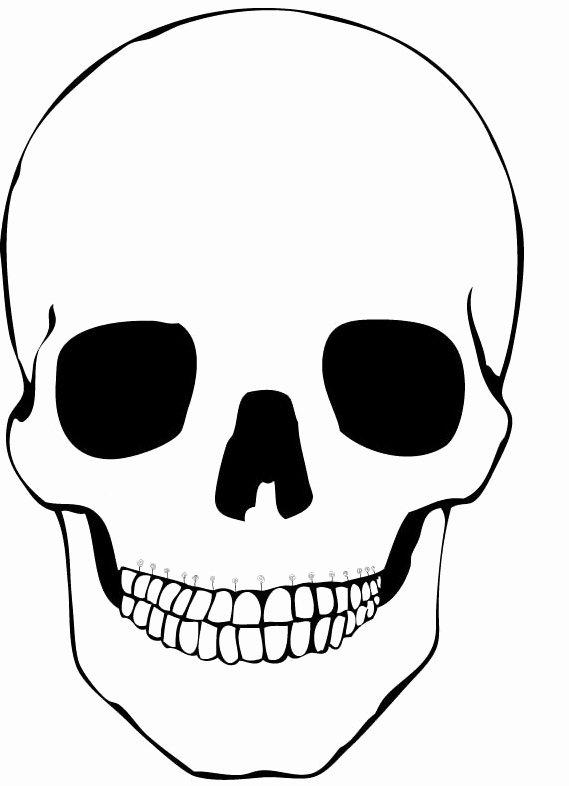 Blank Sugar Skull Template Best Of Index Of Cdn 5 1999 64