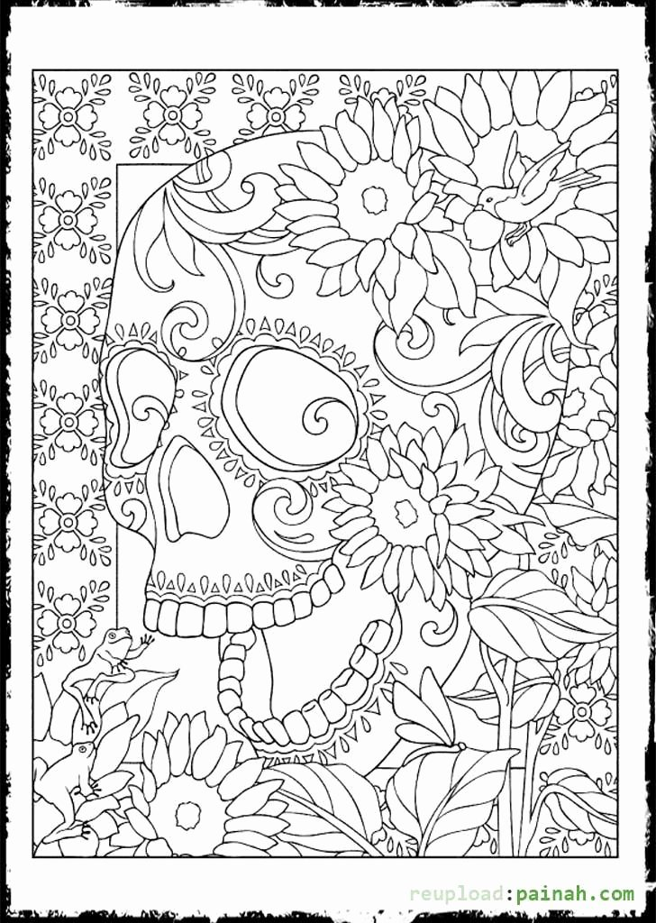 Blank Sugar Skull Template Fresh the 25 Best Skull Coloring Pages Ideas On Pinterest