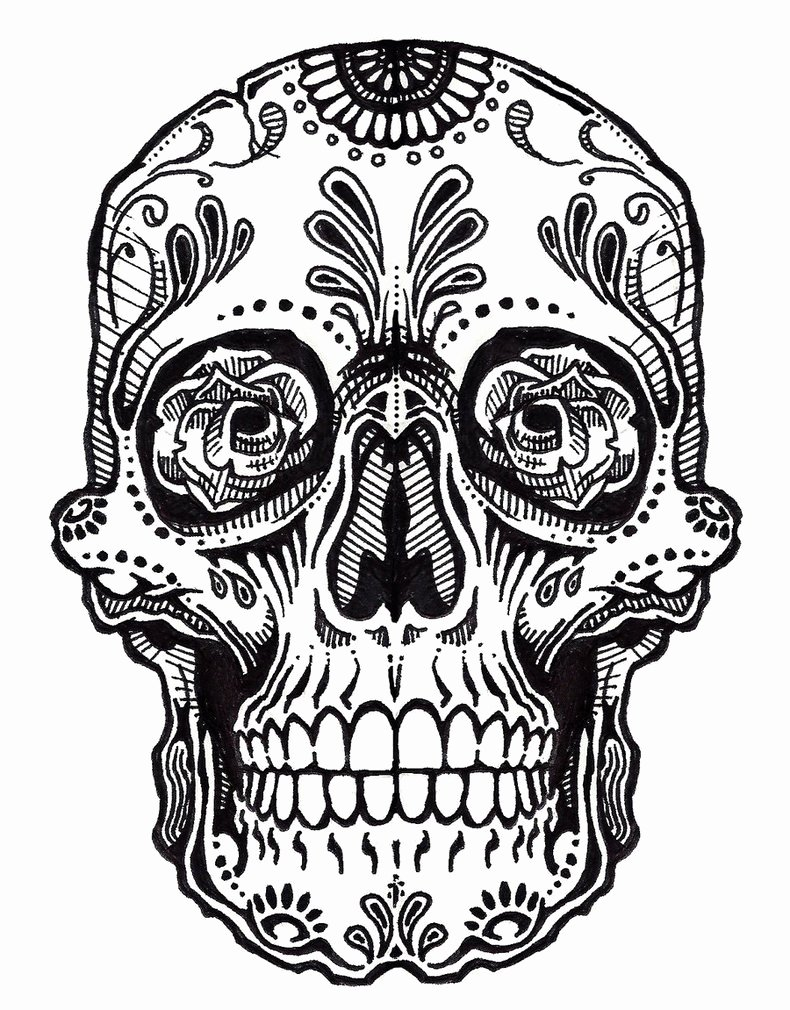 Blank Sugar Skull Template Luxury Sugar Skull Clipart Outline Pencil and In Color Sugar