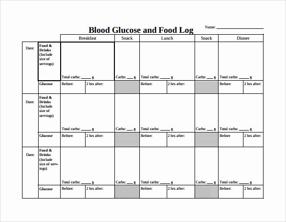 Blood Sugar Log Template Excel Luxury Food Log Template 15 Download Free Documents In Pdf