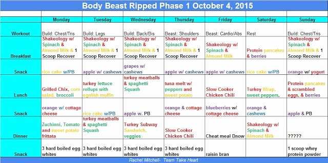Body Beast Meal Plan Spreadsheet Inspirational Christmas Gift Guide