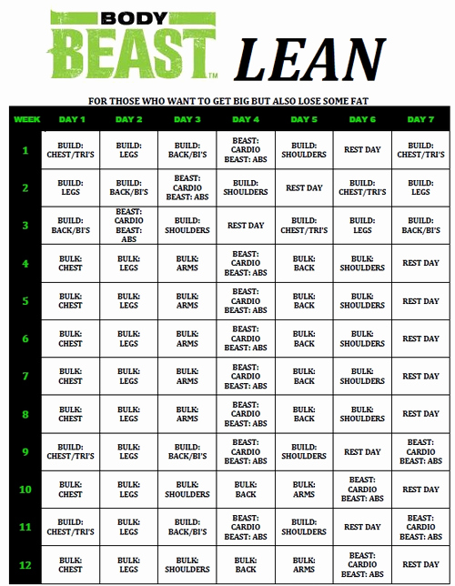 Body Beast Meal Plan Spreadsheet New Body Beast Day 1 Build Chest Tris Review