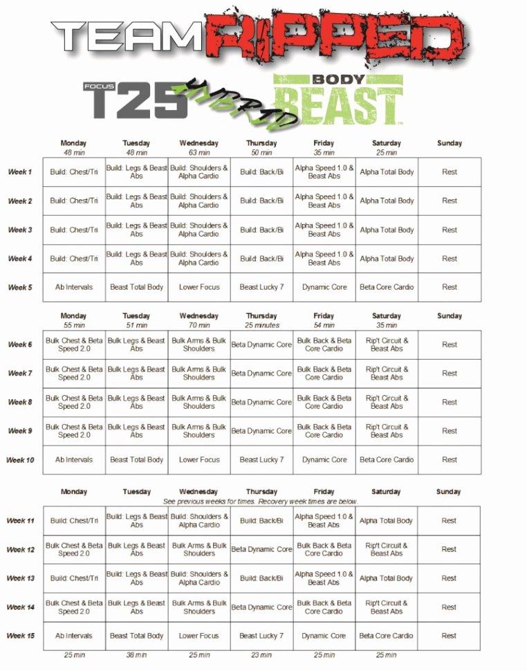 Body Beast Meal Plan Spreadsheet New Body Beast Meal Plan Spreadsheet Google Spreadshee Body