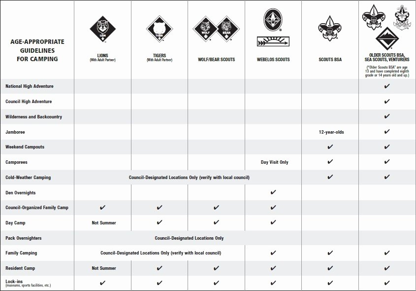 Boy Scout Duty Roster Template Fresh Camping