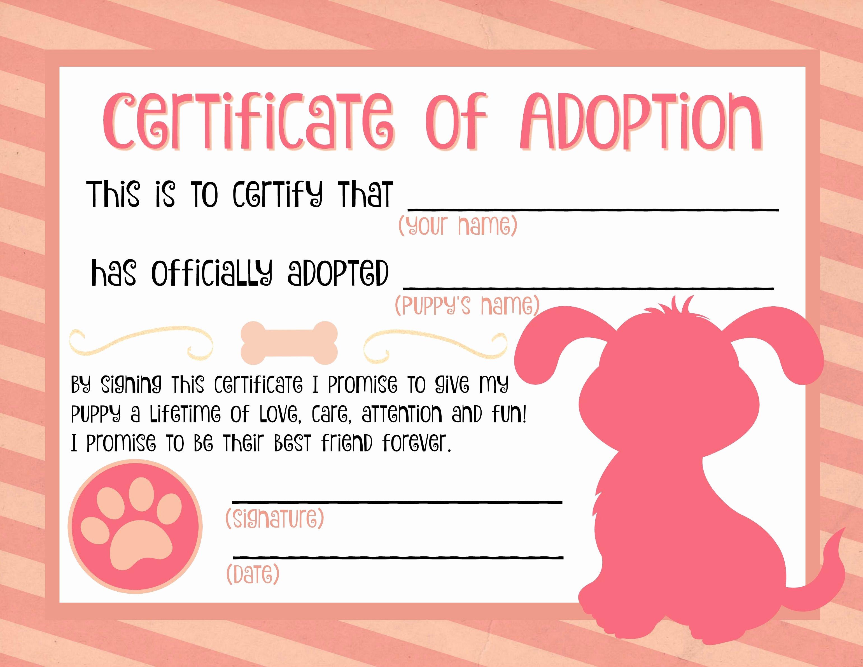 Build A Bear Birth Certificate Template Blank Best Of Best 25 Adoption Certificate Ideas On Pinterest