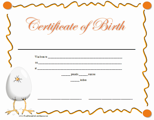 Build A Bear Birth Certificate Template Blank Luxury A Fun Printable Birth Certificate with A Graphic Of A Baby