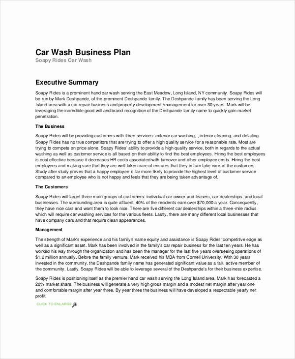 Business Prospectus Example Beautiful 12 A Business Plan Example