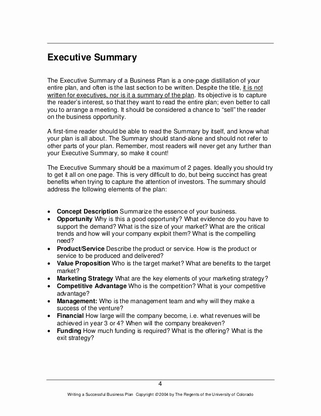 Business Summary Example Luxury How to Write A Great Business Plan