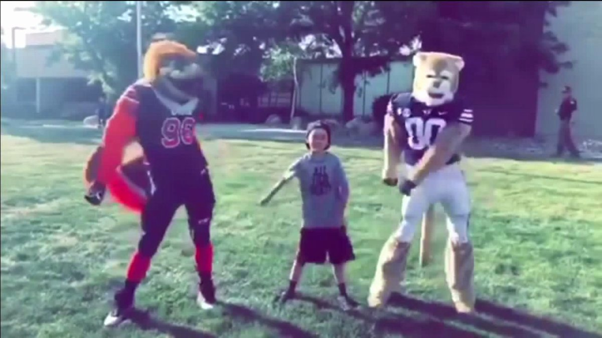 Byu Act Sat Conversion New Utah Utes and byu Cougars Mascots Caught 'flossin' On
